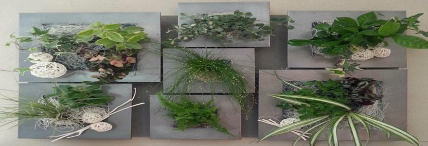 Décoration intérieure : opter pour les cadres végétaux naturels